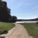 Saltram Walk 2